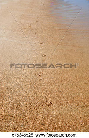 Pictures of Footstep imprints in wet sand on a beach x75345528.