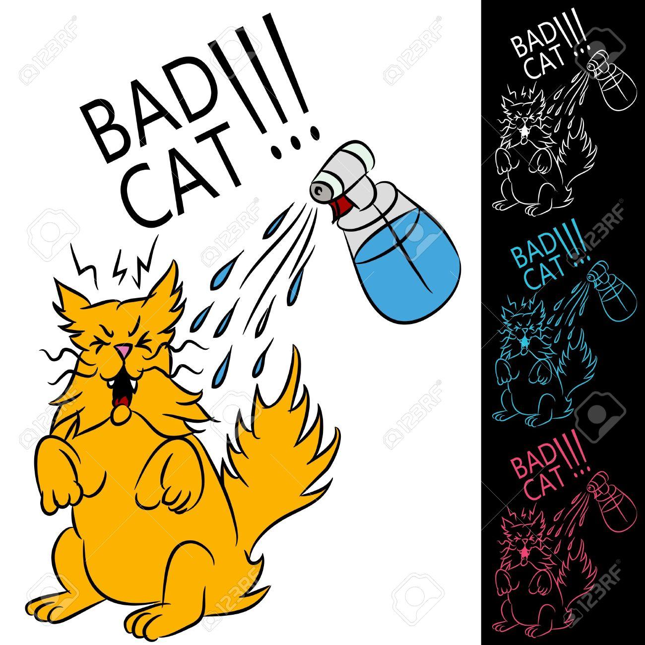 Wet Cat Clipart.