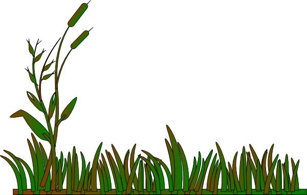 Cattails Outline Green/brown Clip Art at Clker.com.