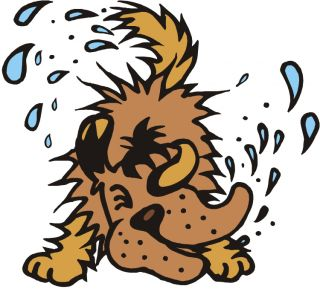 Dog wetting clipart.