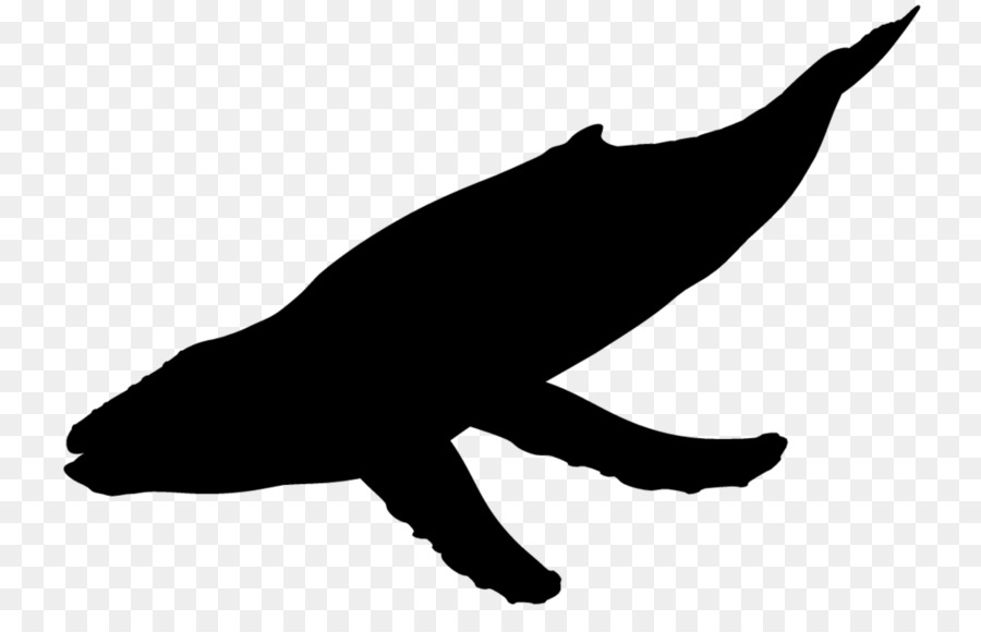 Whale and eagle silhouette clipart clipart images gallery.