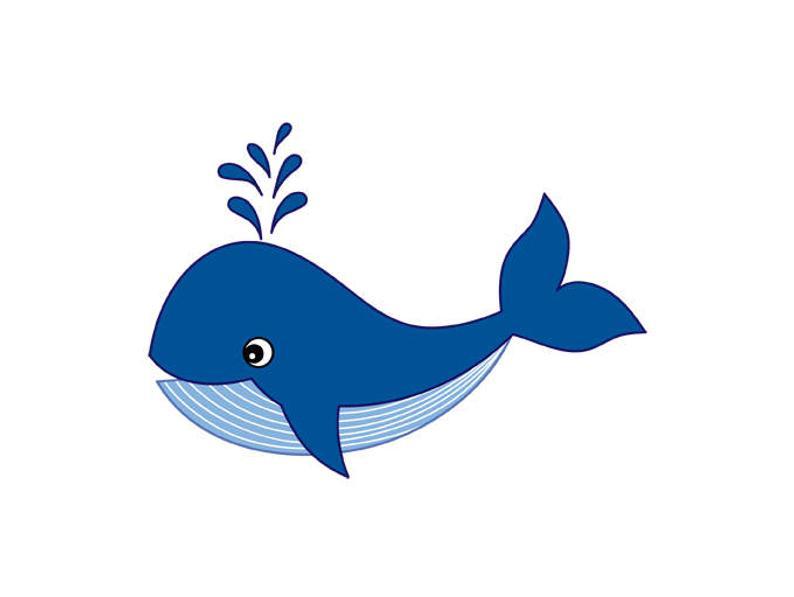 Whale Clipart Digital Vector Whale Sea Ocean Nautical.