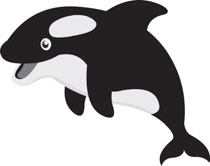 Search Results for killer whale.