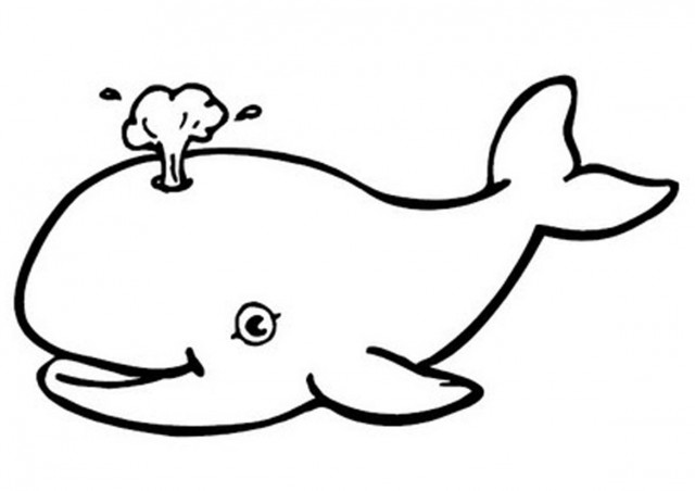 24 Whale Black And White free clipart.