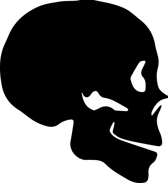 Skull Silhouette Bone Human skeleton.