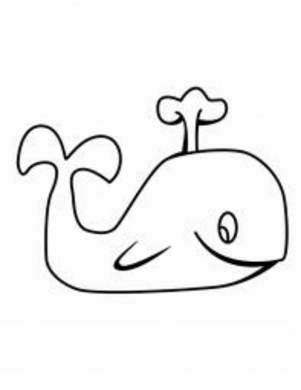 Free Whale Images For Kids, Download Free Clip Art, Free.