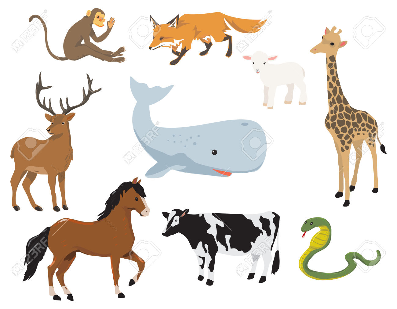 Various Cute Animals. A Monkey, A Fox, A Lamb, A Giraffe, A.