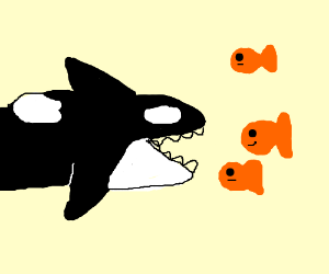 Whale eating goldfish clipart clipart images gallery for.