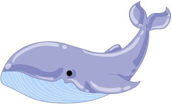 Whale Fish Clipart.