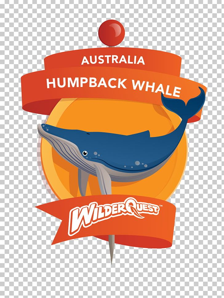 Logo Humpback Whale Cetacea PNG, Clipart, Brand, Cetacea.