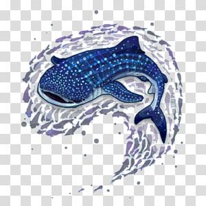 Sperm Whale Cliparts transparent background PNG cliparts.