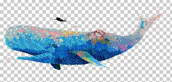 U8354u679d Watercolor Painting Whale Illustrator.