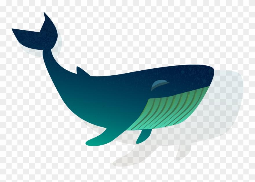 Blue Whale Clipart Shark.