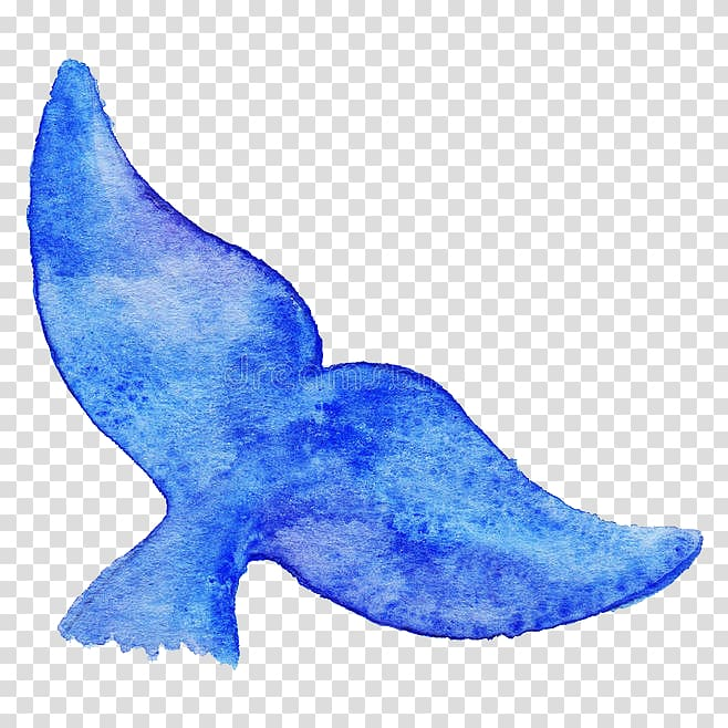Blue whale tail illustration, Blue whale Drawing Illustration.