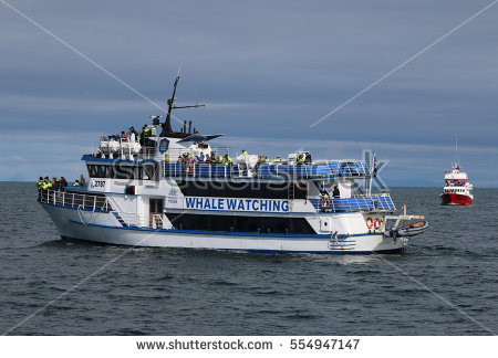 Whale Watching Boat Stock Photos, Royalty.
