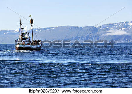 """Picture of """"Whale watching boat, Husavik, Iceland, Europe."""