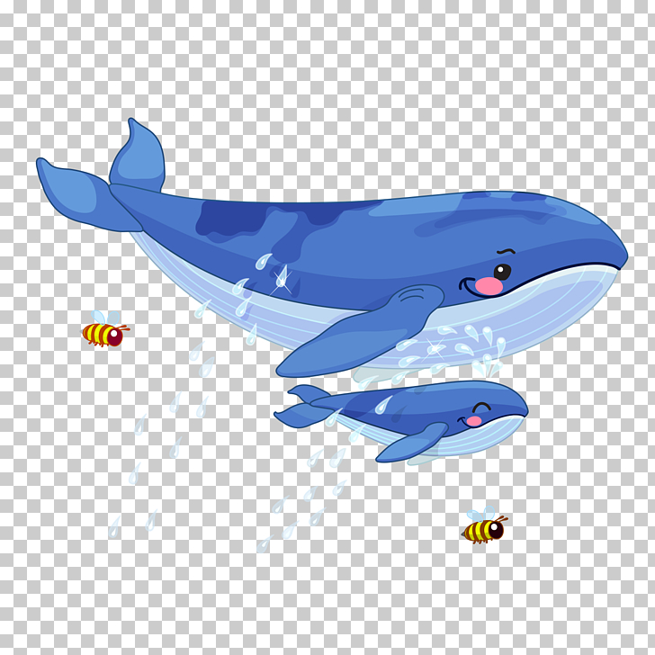Whale Animal Illustration, Big whale and little whale, two.