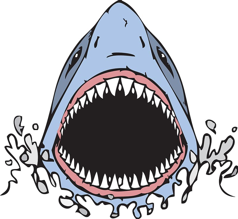 Megamouth shark , Cartoon Shark transparent background PNG.