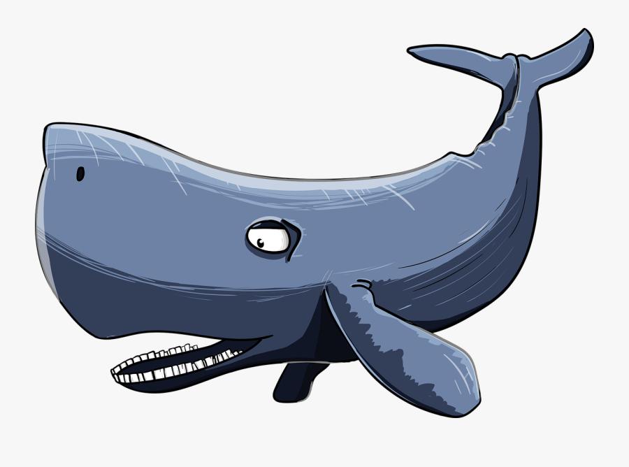 Sperm Whale 3170560 1280.