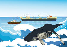 Whalers Stock Illustrations.