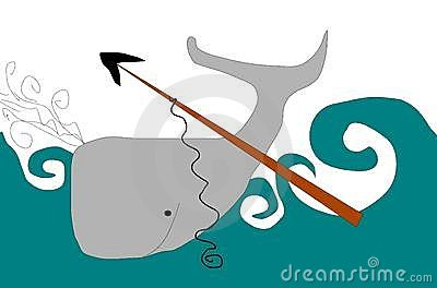 Whaling Stock Illustrations.