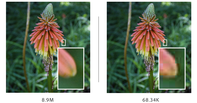 Image compression in Photoshop.