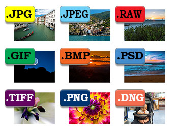 What Is The Difference Between Png And Jpg (106+ images in.