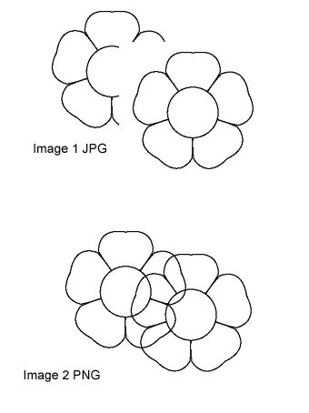 Comparison of PNG and JPG Digital Stamp Formats.
