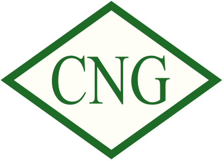What is the full form of CNG?.