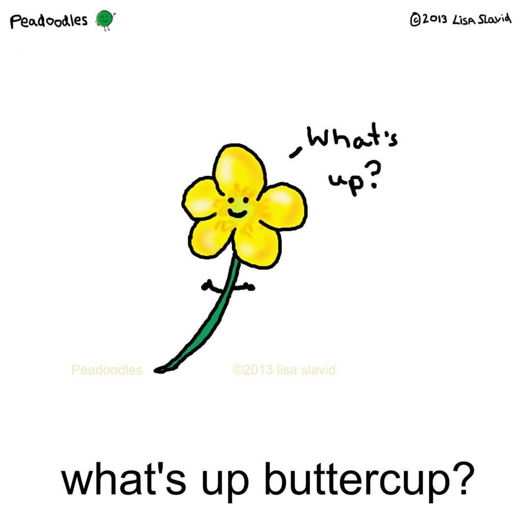 What\'s up buttercup? #peadoodles #playonwords #visualpun.