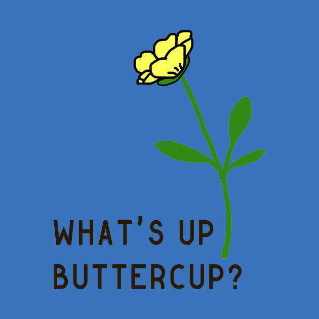 What\'s Up Buttercup?.