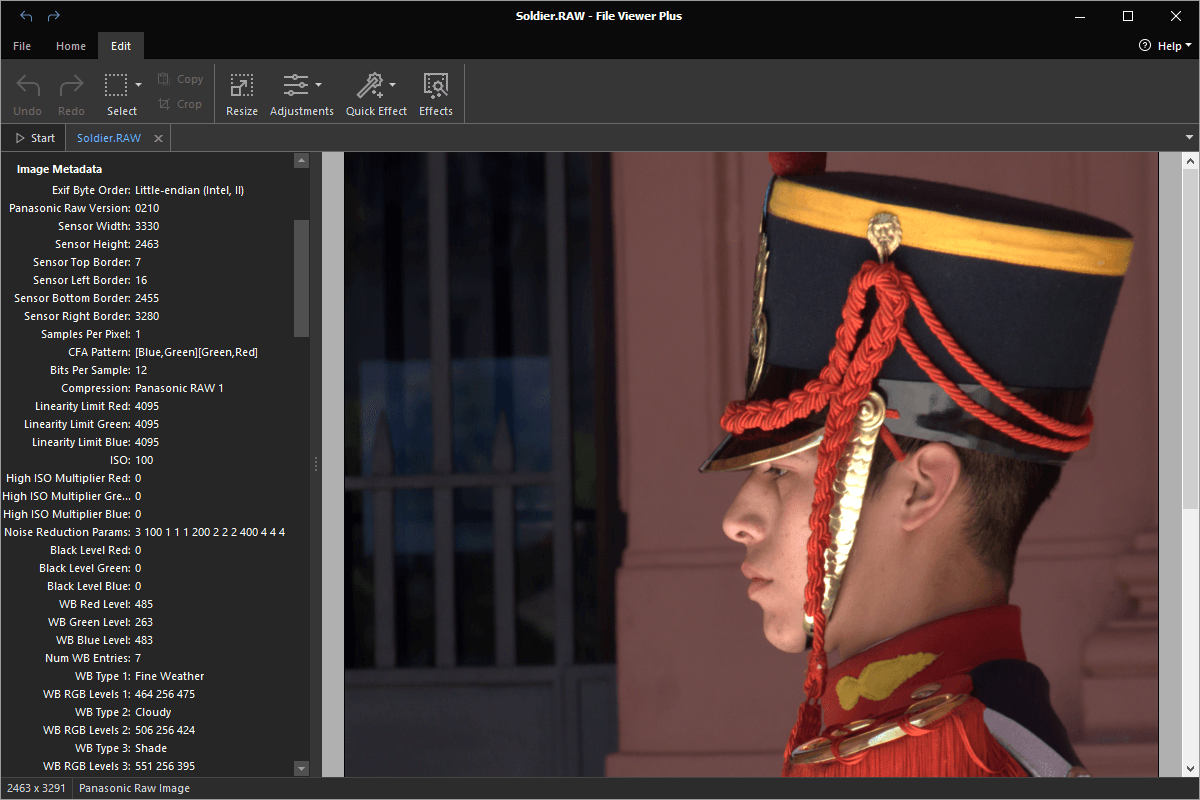 Open .RAW Files with File Viewer Plus.