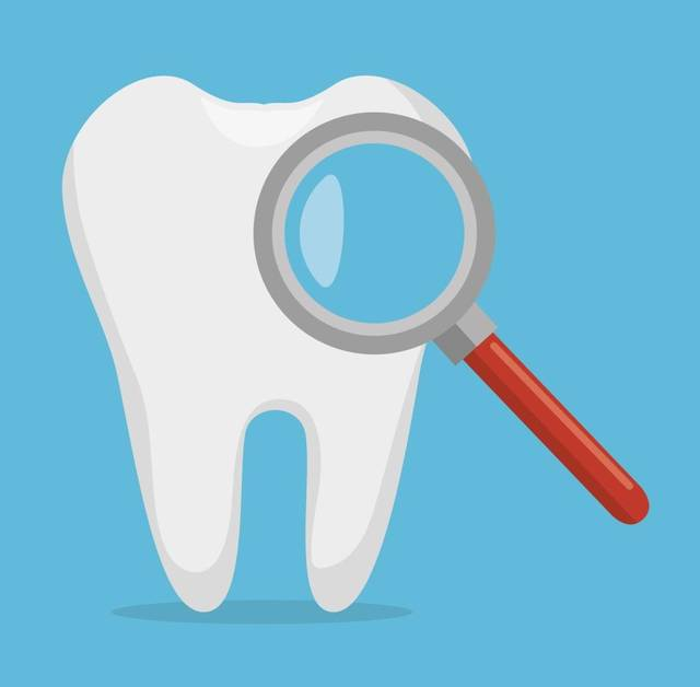 Five things to know about orthodontia in Whatcom County.