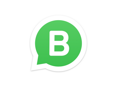 Your complete guide to WhatsApp Business: How it works and what sets.