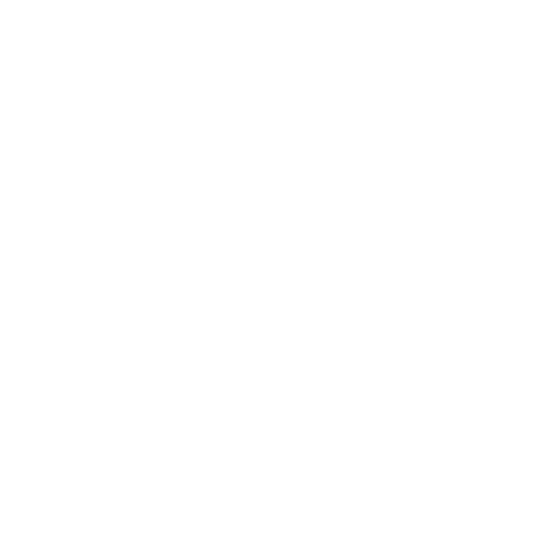 White whatsapp icon.