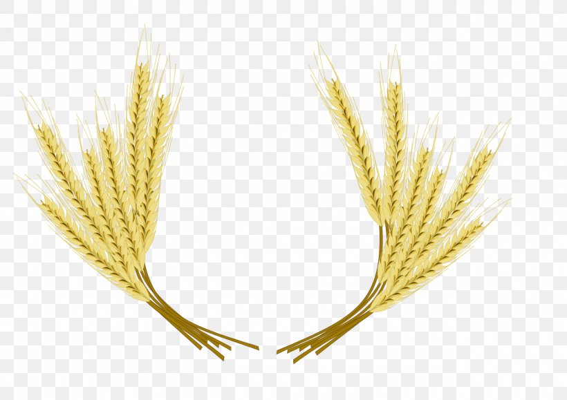 Beer Common Wheat Barley Clip Art, PNG, 1280x905px, Beer.