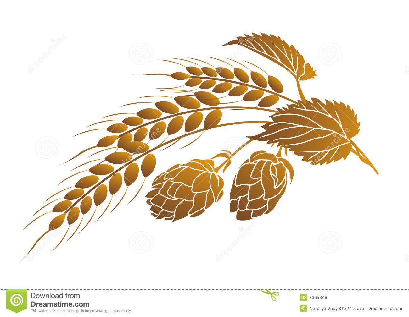 Image result for hop barley clip art.