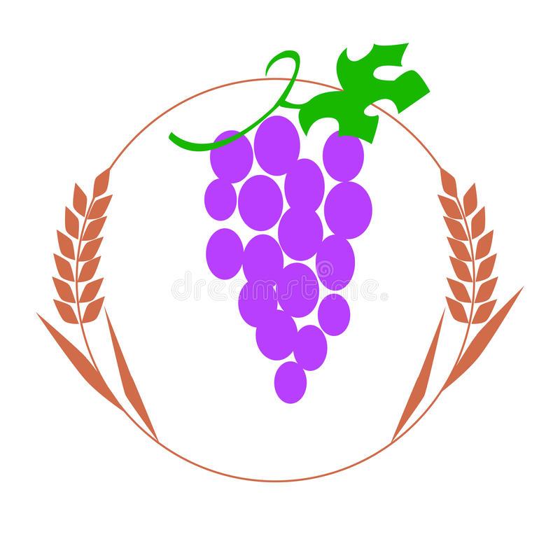 Wheat Grapes Stock Illustrations.