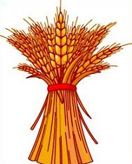 Free Wheat Clipart.