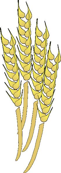 Free to Use & Public Domain Wheat Clip Art.