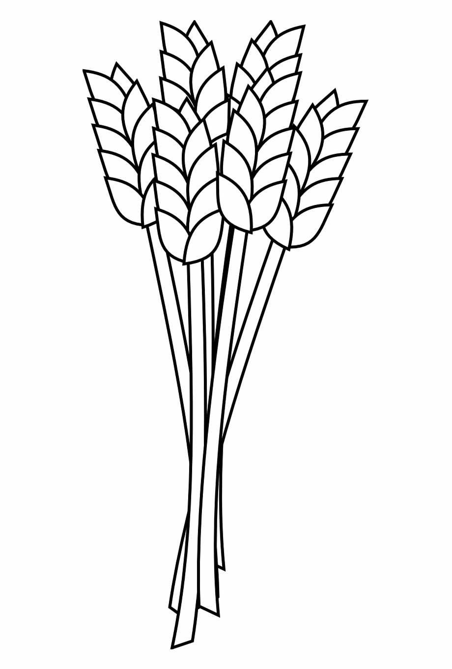 Wheat Grain Agriculture Crop Png Image.