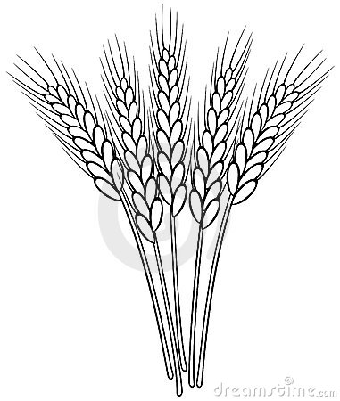 Wheat clipart black and white 6 » Clipart Station.
