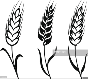 Free Black And White Wheat Clipart.