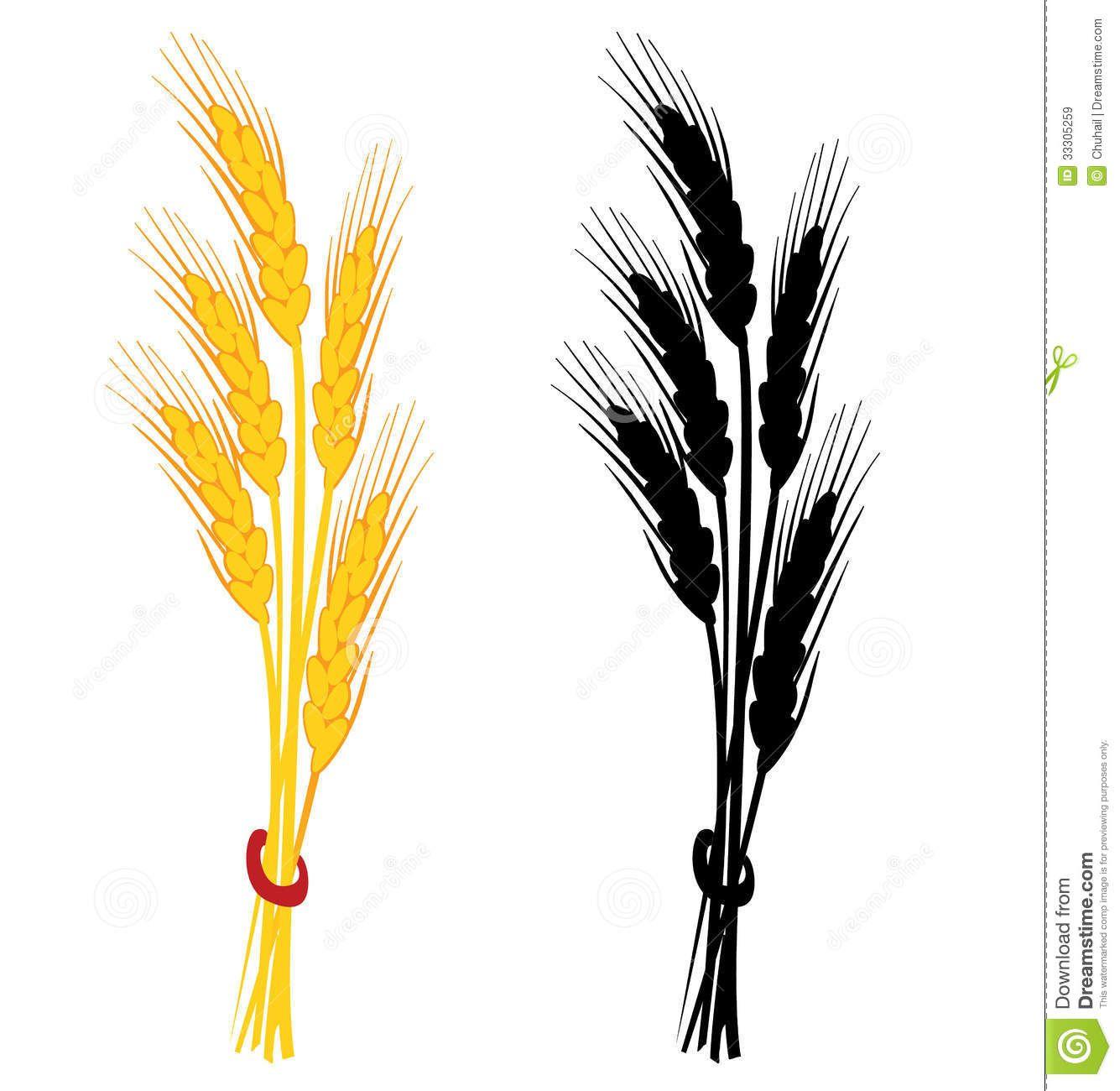 small wheat sheaf vector.