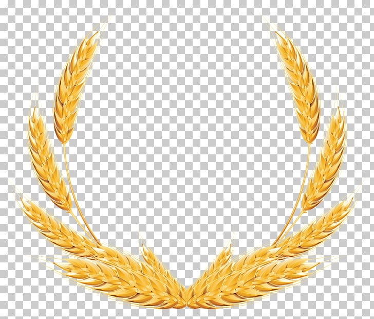 Wheat , Wheat Decoration , yellow wheat wreath PNG clipart.