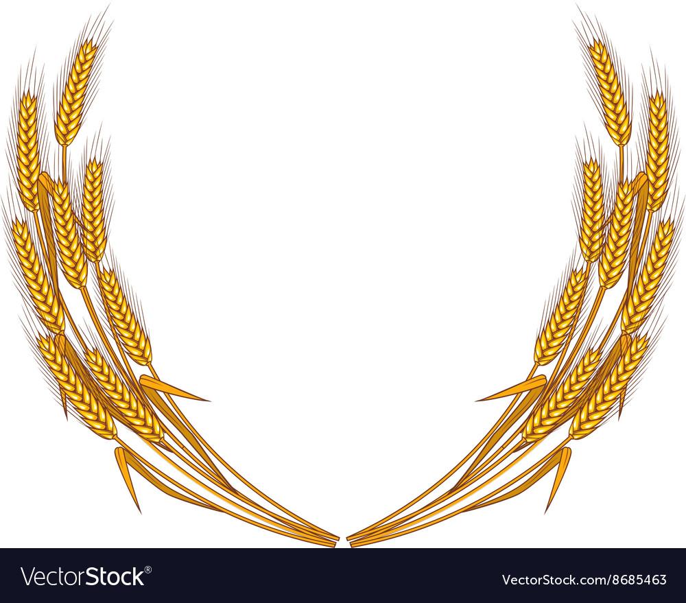 Wheat wreath isolated on white background.