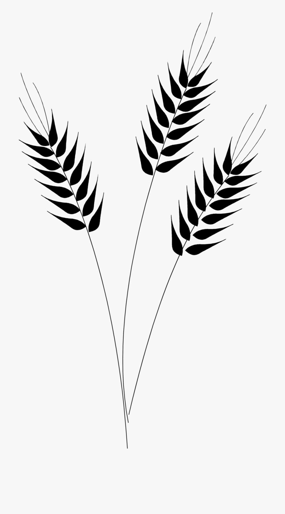 Harvest Clipart Wheat Harvest.