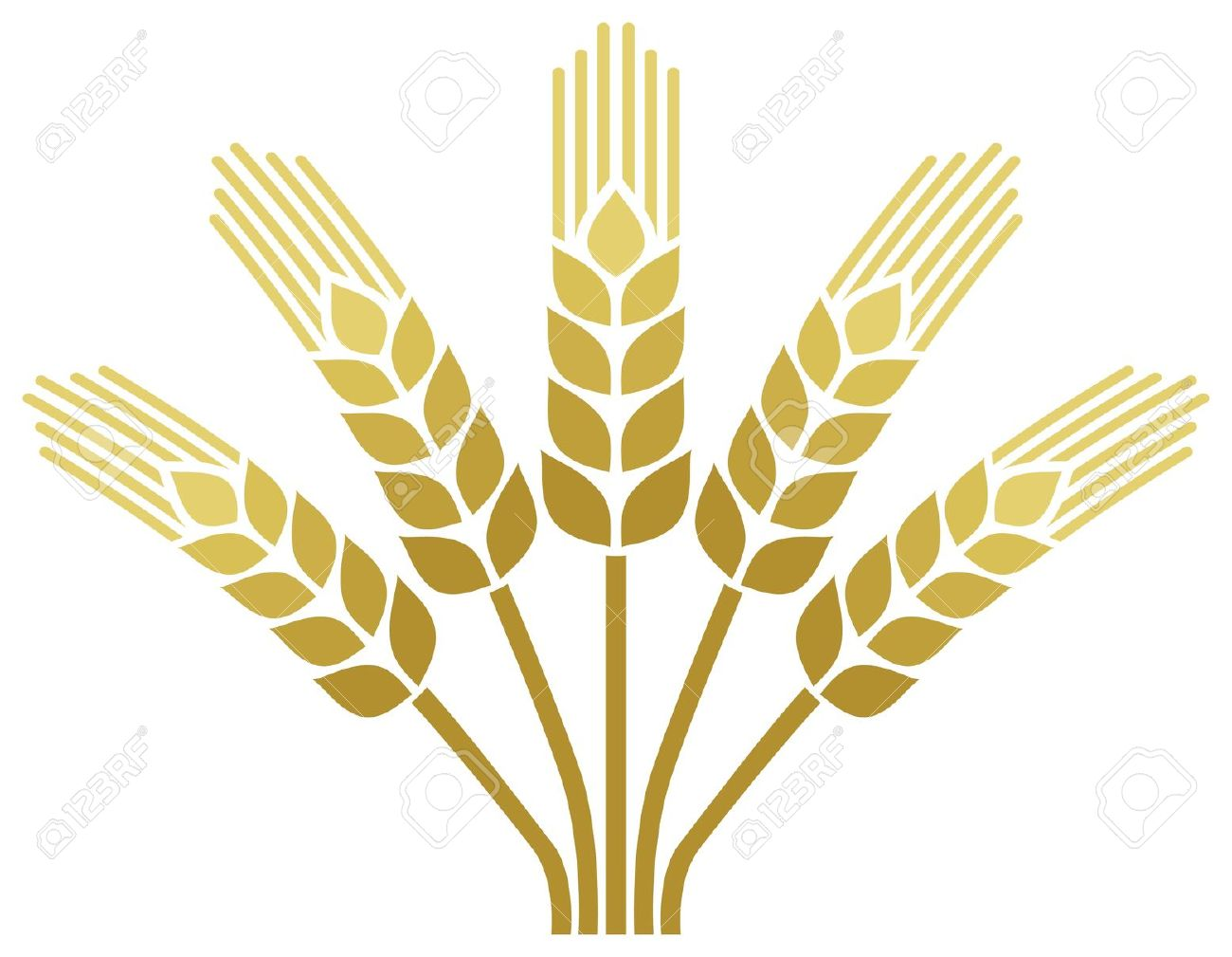 Wheat ear clipart #17
