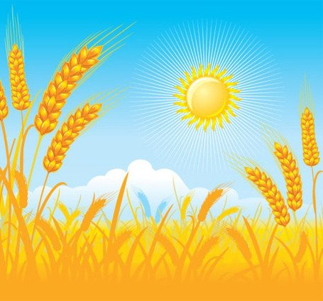 Free Wheat field Clipart and Vector Graphics.