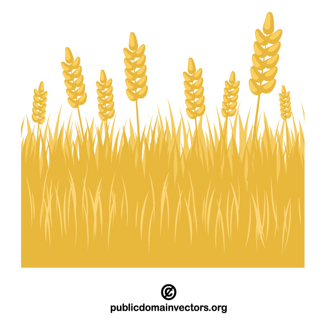 Wheat field clip art.